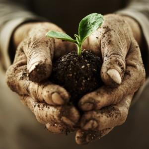 Crediamo che ogni persona voglia svilupparsi e dare un contribuito significativo all'organizzazione e all'ambiente in cui lavora